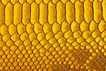 Fototapete - Yellow python skin background. Yellow reptile leather texture. Reptile exotic leather.
