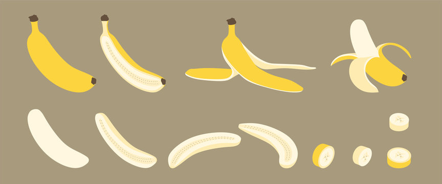 Banana Whole, Peeled, Split and Cut with Banana Peel Simple Vector Set