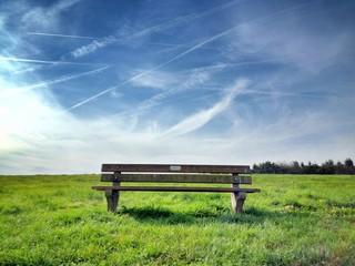 Fototapeta Empty Park Bench In Field obraz