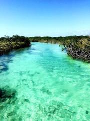 Foto auf AluDibond Reef grun Scenic View Of Landscape Against Clear Blue Sky