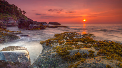 Long exposure sunset with seaweed and water movement on Palolem, Goa Fotobehang
