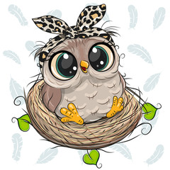 Canvas Prints Owls cartoon Cartoon Owl in a nest on white background