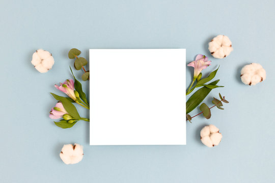 Square paper card mockup with frame made of eucalyptus, cotton, alstroemeria flowers on a blue pastel background. Spring holiday concept.