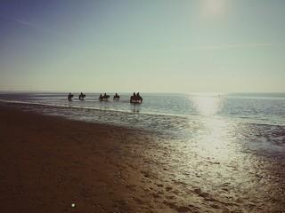 Photo sur Plexiglas Chevaux Silhouette Men On Horses At Beach Against Clear Sky
