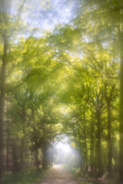 Abstract landscape, a photograph with a modified vintage lens