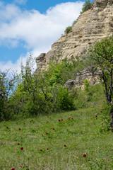 Zietschkuppe im Naturschutzgebiet Gleistalhänge bei Löberschütz