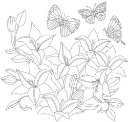 outlined picture of blooming garden with lilies and butterflies