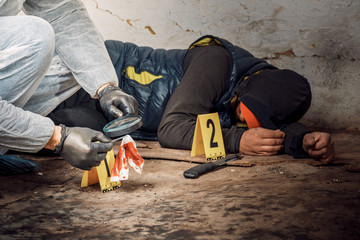 An expert is gathering evidence at a crime scene. The law and the concept of police forensics. - fototapety na wymiar