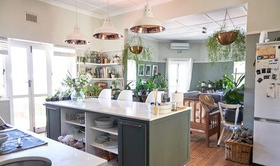 Domestic kitchen with kitchen island and hanging plants