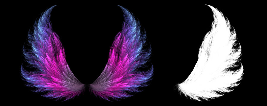 Magical animal wings with white clipping mask