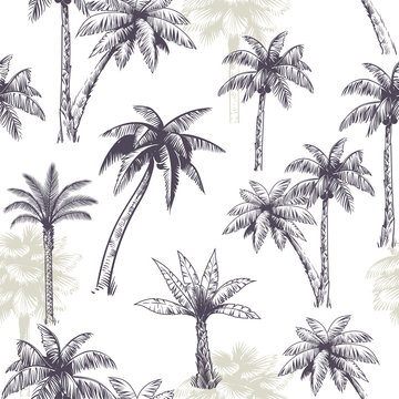 Palm tree seamless pattern. Beautiful island landscape exotic nature with palm trees, beach and ocean tropical jungle sketch vector texture