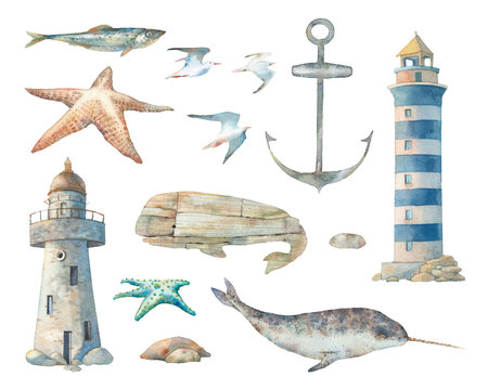 Nautical set: narwhal, sea starfish, anchor, stones, lighthouse. Isolated illustrations on white background