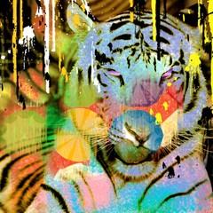 Estores personalizados con motivos artísticos con tu foto Tigre colorata