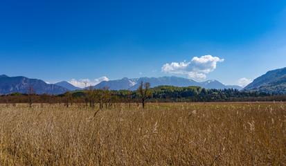 Urlaub in Bayern: das Murnauer Moos im Vorallpenland mit Blick auf die nahen Berge
