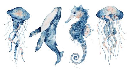 Set of sea animals. Blue watercolor ocean fish, Medusa, whale, seahorse