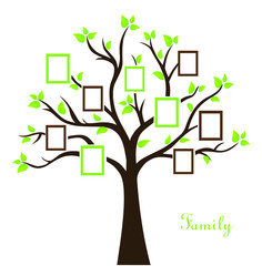 Vector illustration of family photo tree
