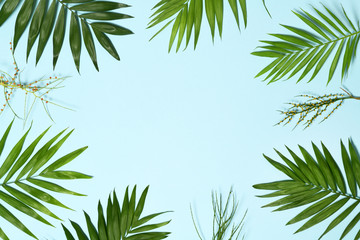 Palm leaves background Wall mural
