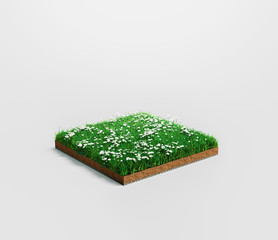 Ground or soil layers. Perspective empty space of green grass and flowers square isolated on white background. 3d rendering