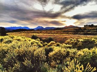 Foto auf AluDibond Gelb Schwefelsäure Countryside Landscape Against Cloudy Sky