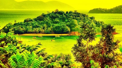 Foto auf AluDibond Gelb Scenic View Of Landscape Against Sky