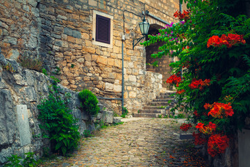 Canvas Prints Narrow alley Paved street with stone house and flowers, Omis, Dalmatia, Croatia