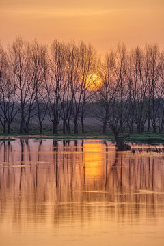 Landscape with the rising sun over the spring river spilled through the trees