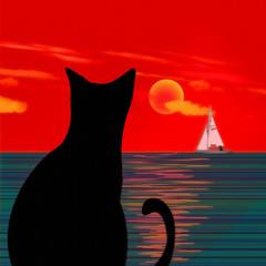 Black cat, sailboat and seascape