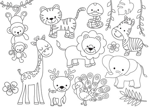 Outline wild safari animals vector illustration for coloring. Jungle animals line art including monkey, tiger, zebra, giraffe, lion, elephant, snake, deer and peacock.
