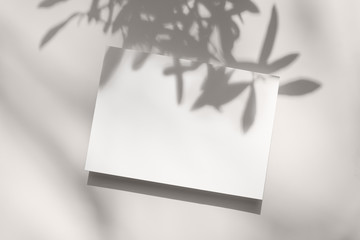 Summer stationery still life scene. Close-up of blank paper, greeting card mock-up. Trendy olive...