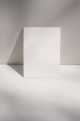 Artistic still life scene. Blank vertical greeting card, poster mockup against beige, nude wall....