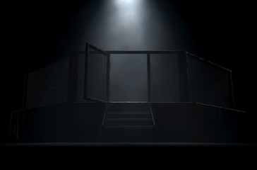 MMA Cage Door Spotlight