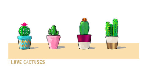 Four cacti in color pots isolated on white background. Vector Illustration