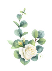 Watercolor vector hand painted clipart with green eucalyptus leaves and roses.