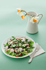 Fresh salad with cucumber and radishes and dill for Easter brunch