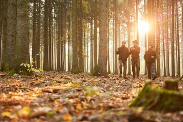 Gruppe Förster spazieren abends durch einen Wald