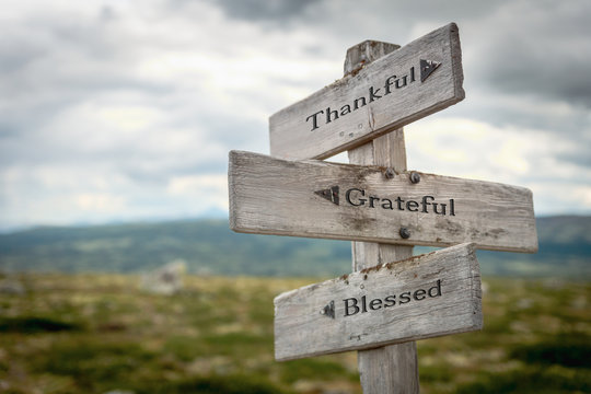 thankful grateful blessed text engraved on wooden signpost outdoors in nature.