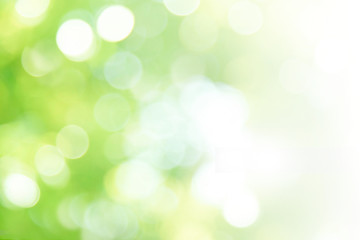 Wall Mural - Green abstract background blur,holiday wallpaper