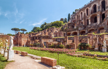 Fototapete - Roman Forum view in summer, Rome, Italy. Old Forum is famous tourist attraction of Rome, great ancient ruins in Rome city center,