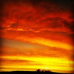 Foto auf AluDibond Rot kubanischen Silhouette Landscape Against Cloudy Sky At Sunset