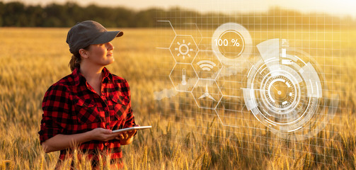 A woman farmer examines the field of cereals and sends data to the cloud from the tablet. Smart...