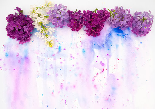 Purple violet lilac spring flowers and hand painted watercolor blot spot on white background. A4 paper size border frame photo with free blank copy space for text. For card, invitation wedding decor