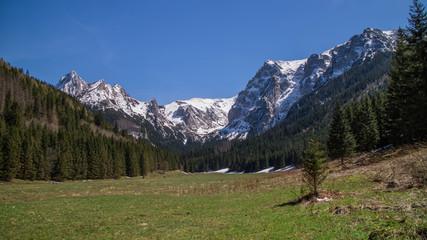 Wielka Polana Małołącka w Dolinie Małej Łąki w Tatrach Zachodnich -  wiosną.  - fototapety na wymiar