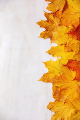 Red and yellow autumn maple leaves over white marble background. Flat lay. Fall creative background.