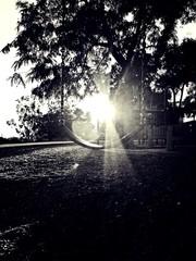 Obraz Empty Swing Over Field On Sunny Day - fototapety do salonu