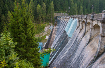 Wall Mural - Dam In Forest In Northern Italy.