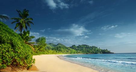 Fototapete - beach at Mahe island,  Seychelles