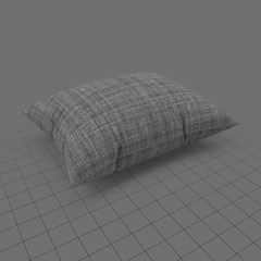Modern cushion