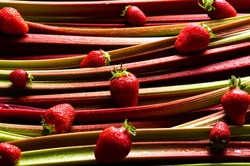 Rhubarb and strawberry background. Organic pie ingredients