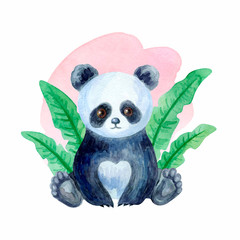 Cute panda bear. Hand painted watercolor illustration isolated on a white background.