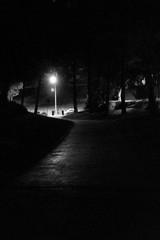 Fototapeta Illuminated Street Light At Night